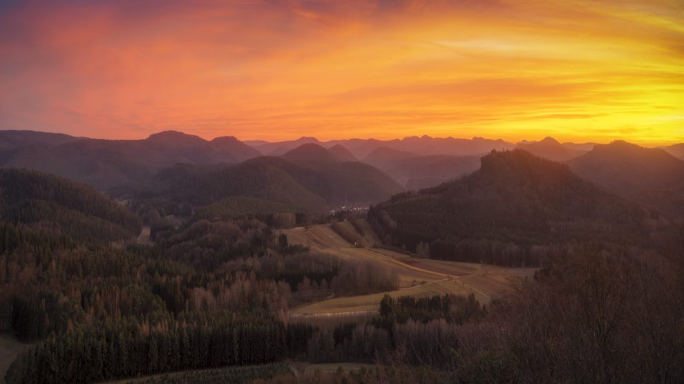 Die Angst und die Fotografie – Mein Trip in den Pfälzer Wald